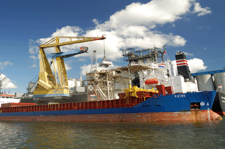 'IGMA/Cargill' Bulk Port Terminal at Amsterdam Harbor-Case Study